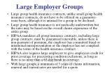 large employer groups