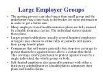 large employer groups1