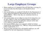 large employer groups2