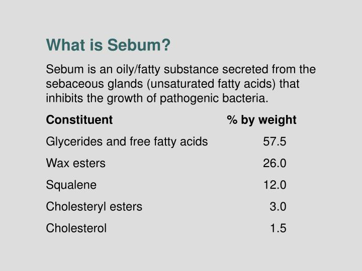 What is Sebum?