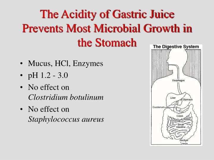 The Acidity of Gastric Juice Prevents Most Microbial Growth in the Stomach