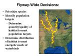 flyway wide decisions