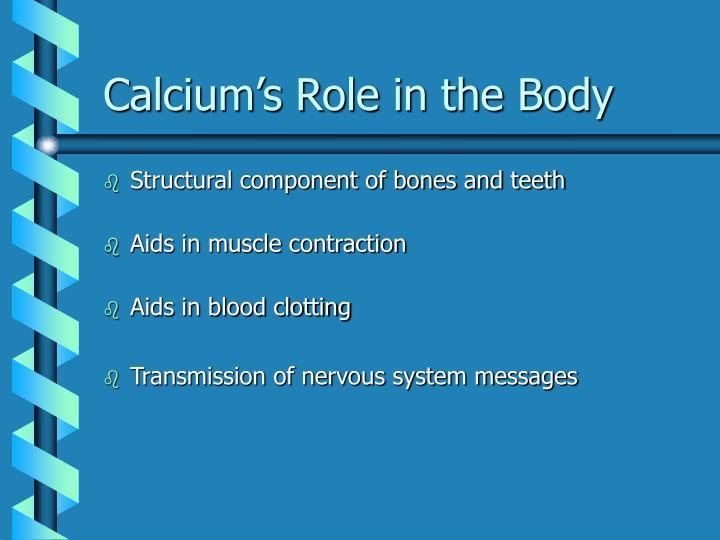 Calcium's Role in the Body