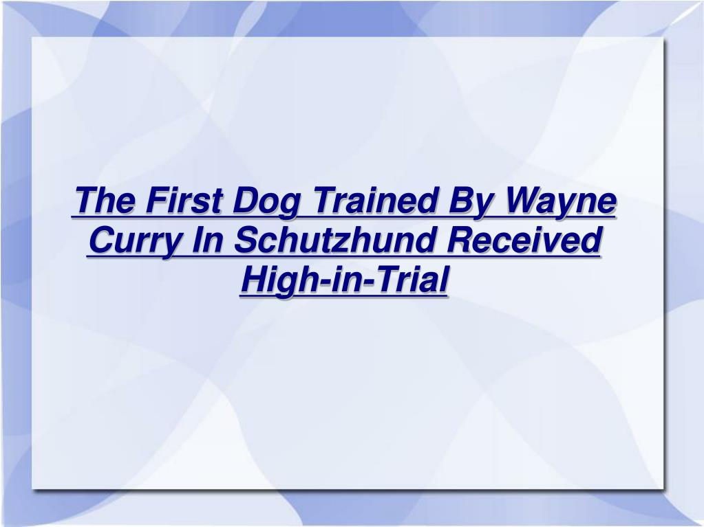 The First Dog Trained By Wayne Curry In Schutzhund Received High-in-Trial