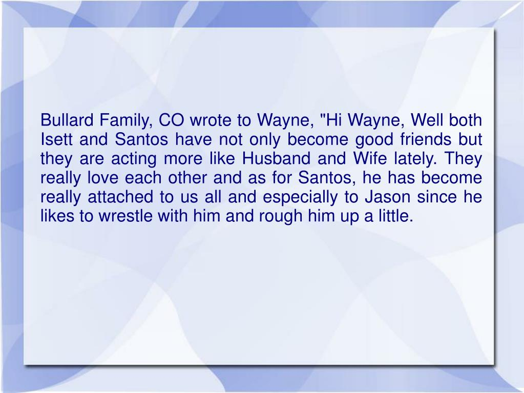 """Bullard Family, CO wrote to Wayne, """"Hi Wayne, Well both Isett and Santos have not only become good friends but they are acting more like Husband and Wife lately. They really love each other and as for Santos, he has become really attached to us all and especially to Jason since he likes to wrestle with him and rough him up a little."""