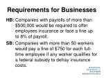 requirements for businesses