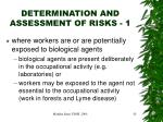 determination and assessment of risks 1