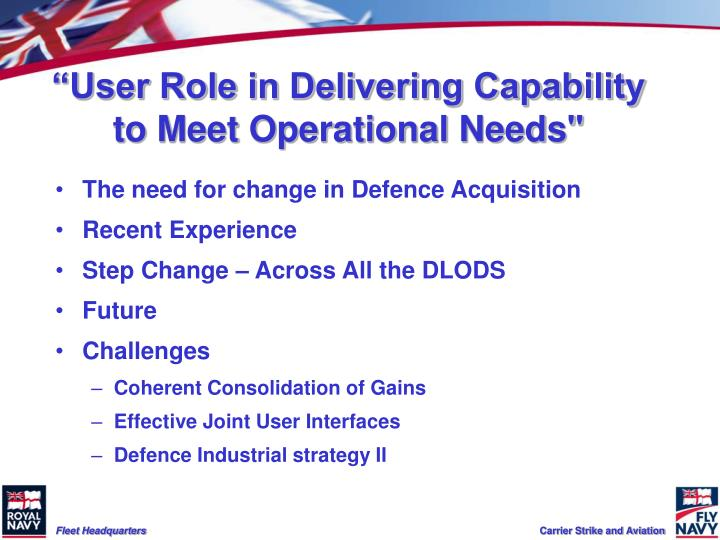 User role in delivering capability to meet operational needs
