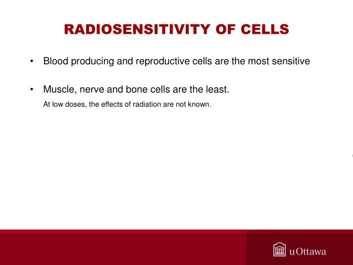 RADIOSENSITIVITY OF CELLS