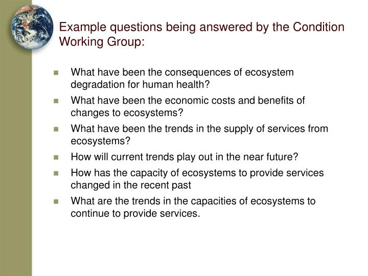 Example questions being answered by the Condition Working Group: