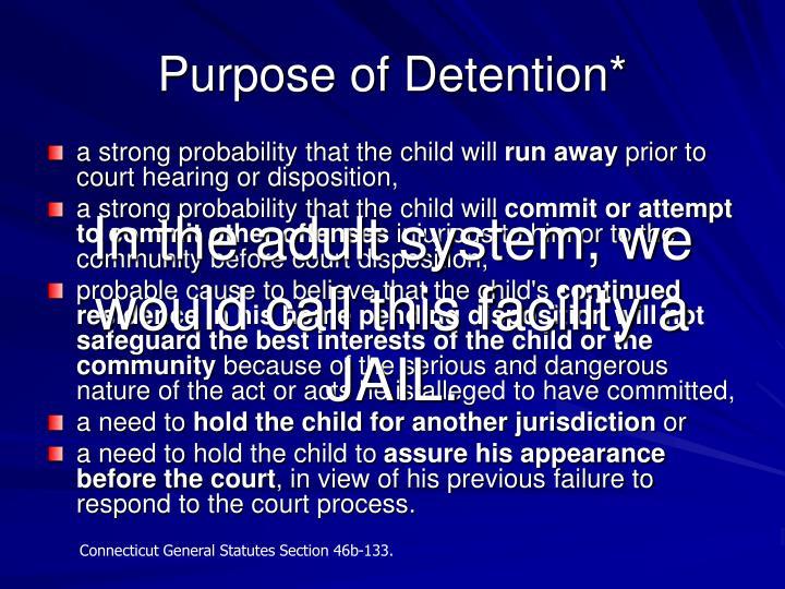 Purpose of Detention*