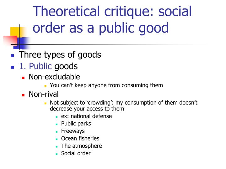 Theoretical critique: social order as a public good