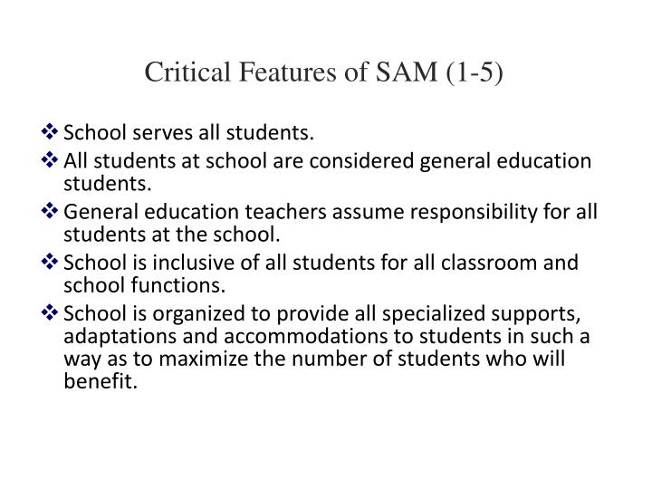 Critical Features of SAM (1-5)