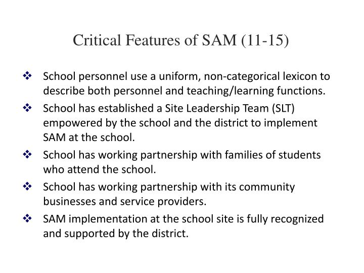 Critical Features of SAM (11-15)