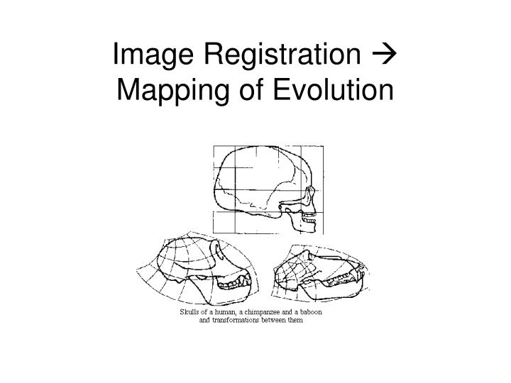 Image registration mapping of evolution