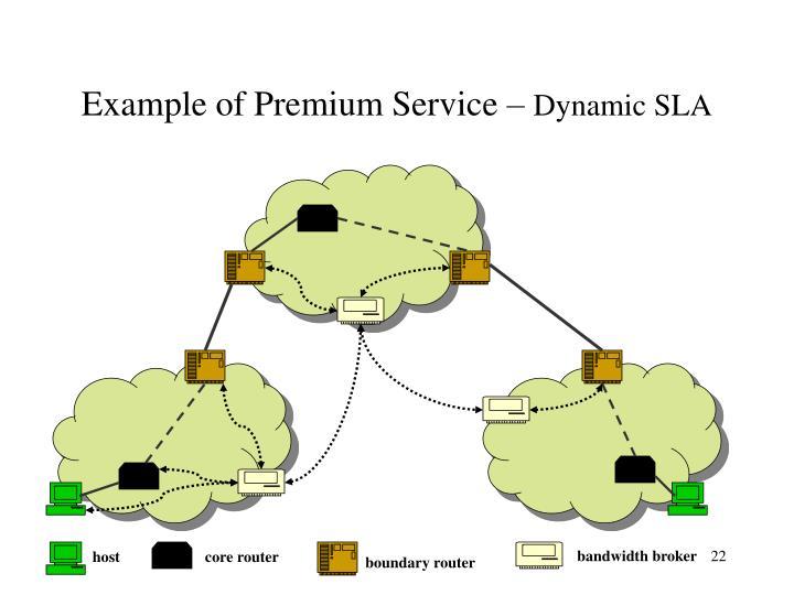Example of Premium Service –