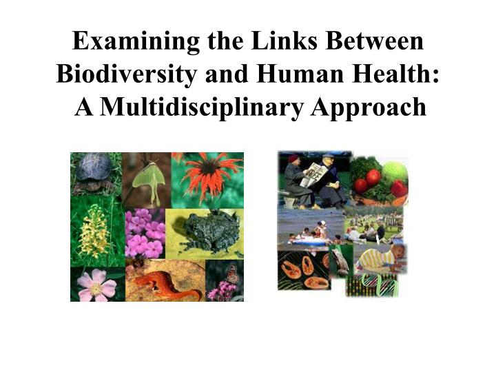 Examining the links between biodiversity and human health a multidisciplinary approach