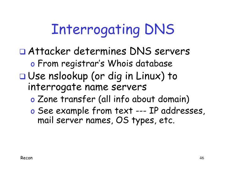 Interrogating DNS