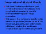 innervation of skeletal muscle7