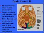 optic nerves ii