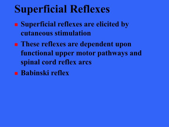 Superficial Reflexes