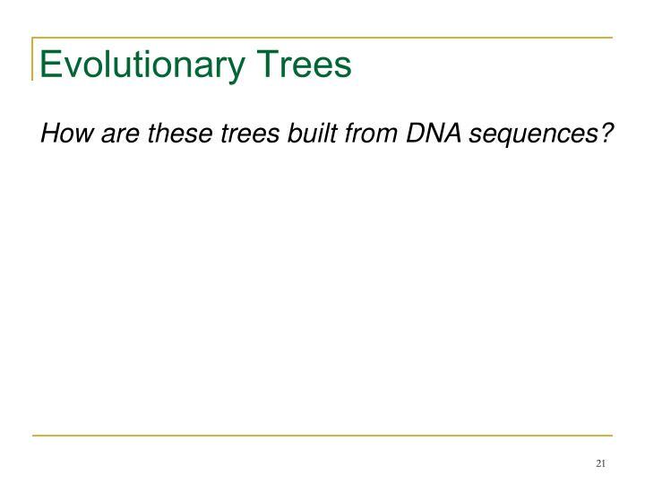 Evolutionary Trees