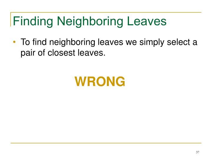 Finding Neighboring Leaves