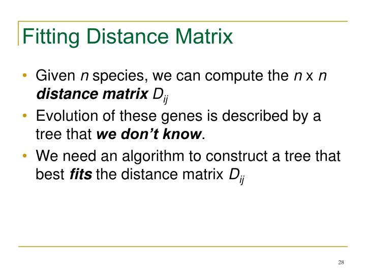 Fitting Distance Matrix