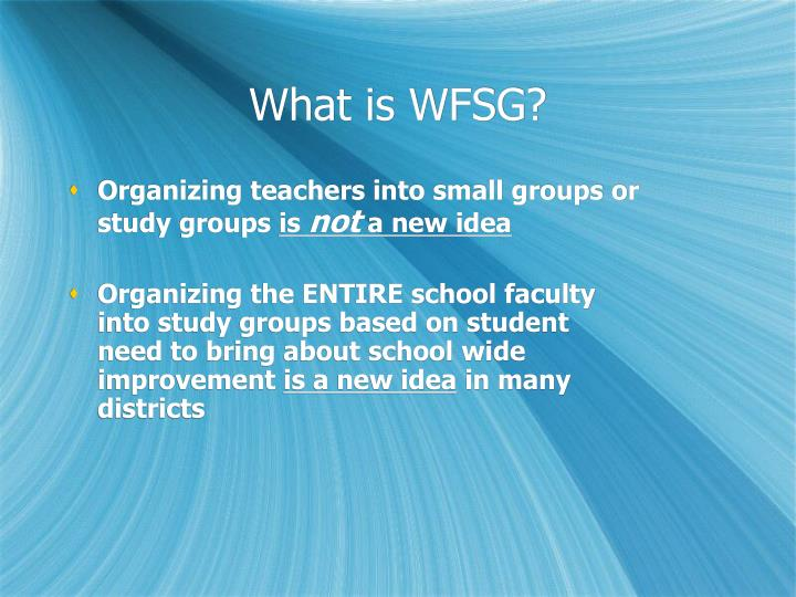 What is WFSG?