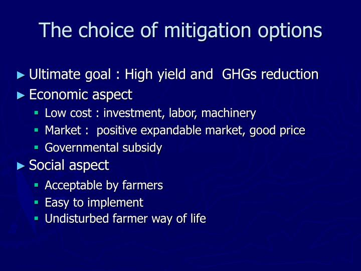 The choice of mitigation options