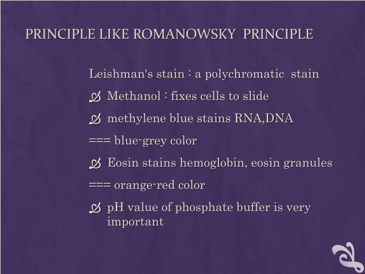 principles of romanowsky stains pdf