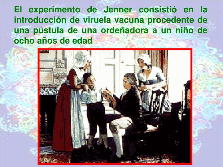 El experimento de Jenner consistió en la introducción de viruela vacuna procedente de una pústula de una ordeñadora a un niño de ocho años de edad