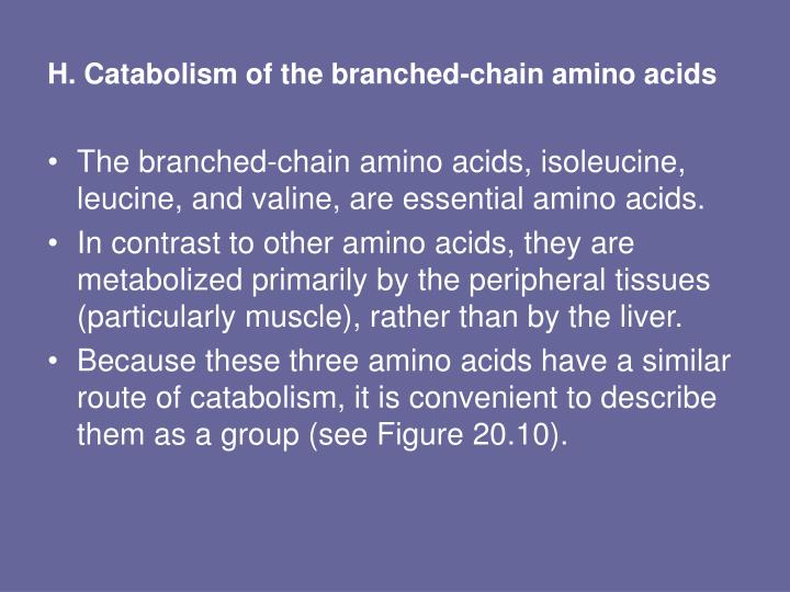 H. Catabolism of the branched-chain amino acids