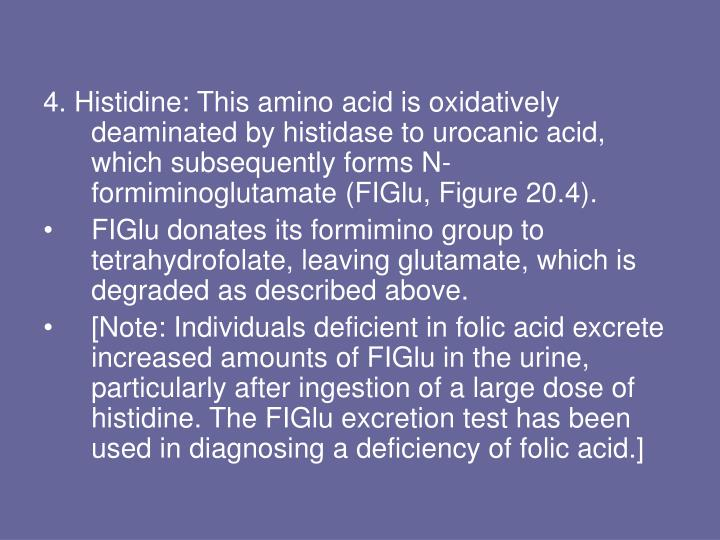 4. Histidine: This amino acid is oxidatively deaminated by histidase to urocanic acid, which subsequently forms N-formiminoglutamate (FIGlu, Figure 20.4).