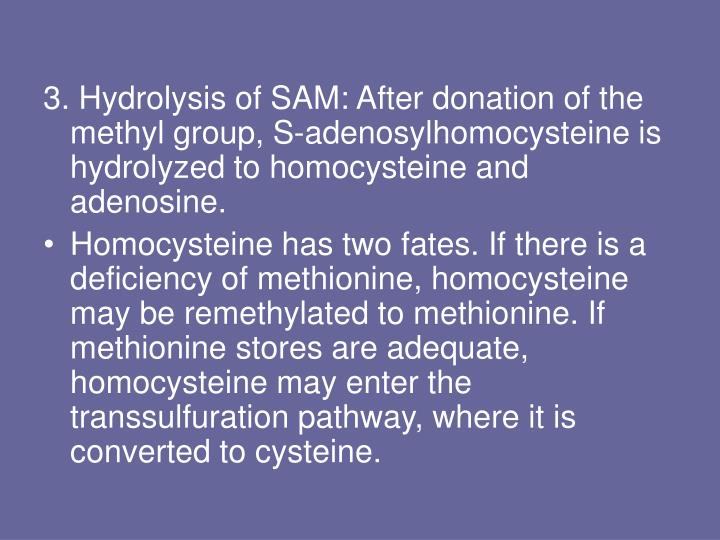3. Hydrolysis of SAM: After donation of the methyl group, S-adenosylhomocysteine is hydrolyzed to homocysteine and adenosine.