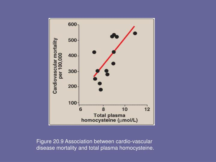 Figure 20.9 Association between cardio-vascular disease mortality and total plasma homocysteine.