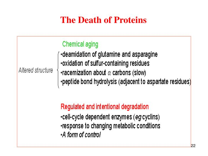 The Death of Proteins