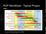 rup workflows typical project