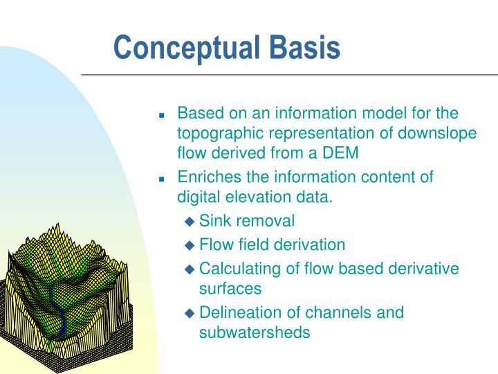 Conceptual Basis