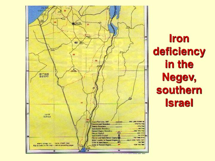 Iron deficiency in the Negev, southern Israel