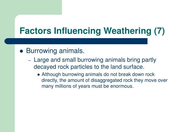 Factors Influencing Weathering (7)