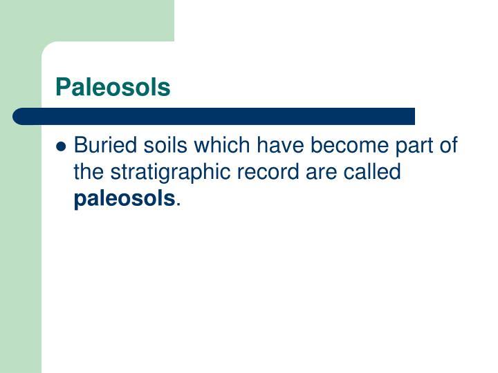 Paleosols