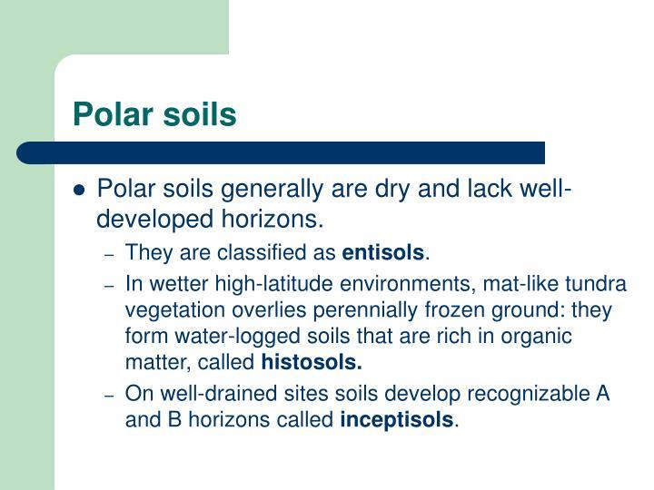 Polar soils
