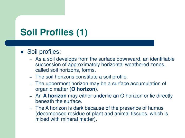 Soil Profiles (1)
