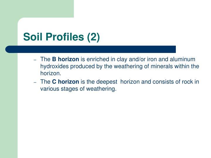 Soil Profiles (2)