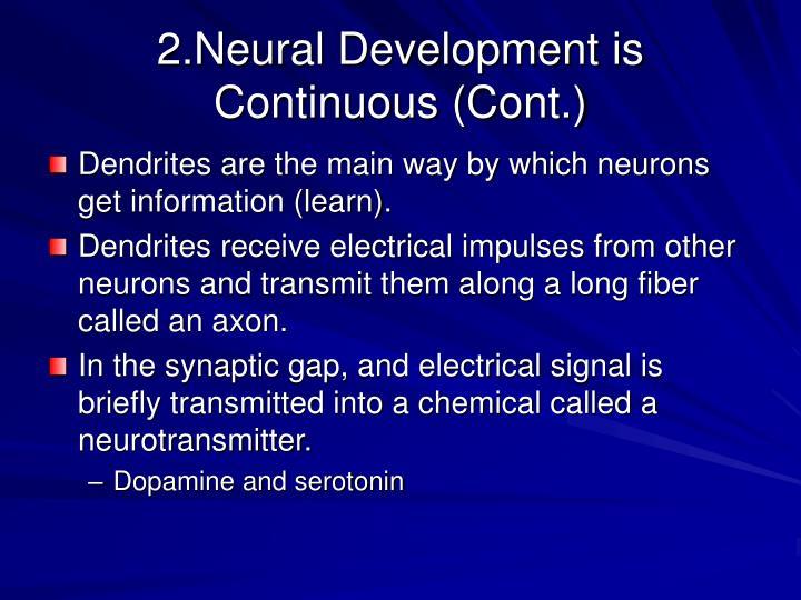 2.Neural Development is Continuous (Cont.)