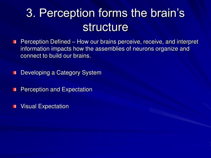 3. Perception forms the brain's structure