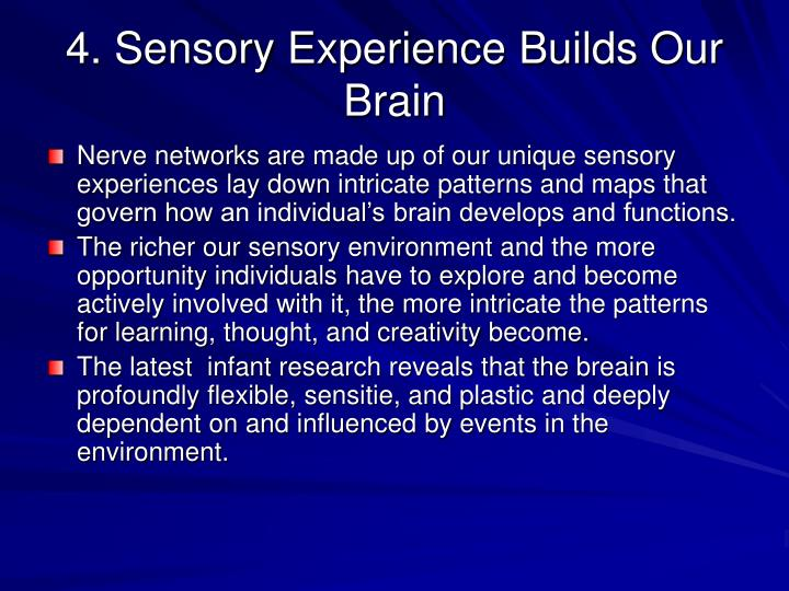4. Sensory Experience Builds Our Brain