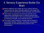 4 sensory experience builds our brain