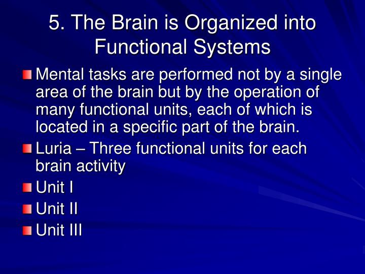 5. The Brain is Organized into Functional Systems